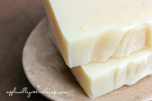 Grapefruit Peppermint Luffa Body Bar - Apple Valley Natural Soap