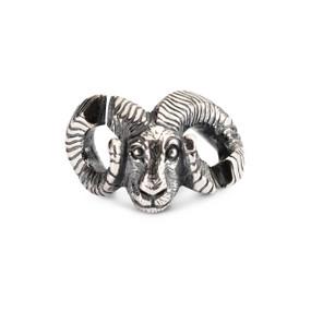 X Jewelry, Aries