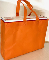 "Tote Bag (Orange) 15""W x 11.5""H x 4""Deep"