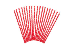 Paper Straws - Pack of 24