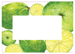 Lime Preserving Labels - Ideal for Marmalade's, curds, juices, cordials and tarts!