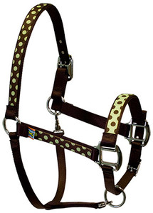 Green Brown Polka Equine Elite Halter