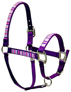 Pink & Purple Stripes Equine Elite Halter