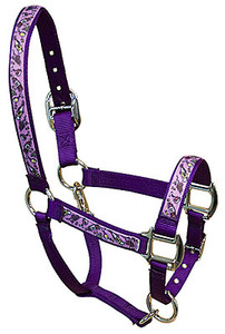 Wine Crazy Equine Elite Halter