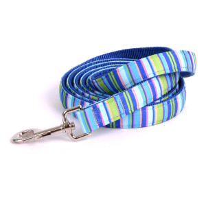 Blue Stripes Equine Elite Horse Lead