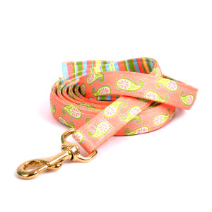 Melon Paisley High Fashion Horse Lead