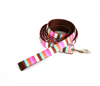 Multi Stripe Equine Elite Horse Lead