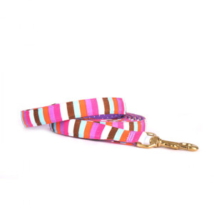 Multi Stripe High Fashion Horse Lead