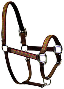 Celtic Equine Elite Halter