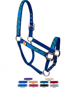 Personalized Name Plate Blue Kilt Equine Elite Halter