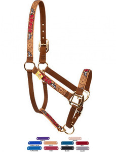 Personalized Name Plate Rodeo High Fashion Horse Halter