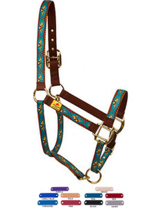 Personalized Name Plate Kokopelli High Fashion Horse Halter