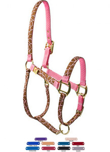 Personalized Name Plate Giraffe Pink High Fashion Horse Halter