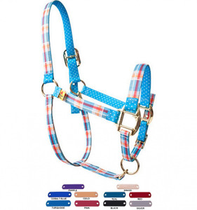 Personalized Name Plate Madras Blue High Fashion Horse Halter