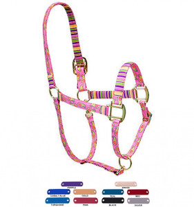 Personalized Name Plate Pink Paisley High Fashion Horse Halter
