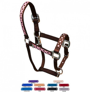 Personalized Name Plate Pink Brown Polka Equine Elite Halter