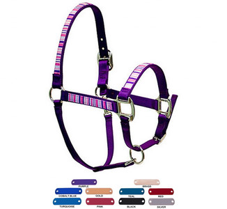 Personalized Name Plate Pink & Purple Stripes Equine Elite Halter