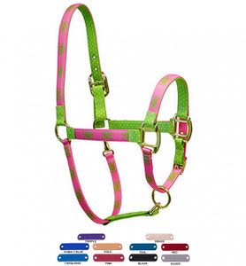 Personalized Name Plate Pink Green Skulls High Fashion Horse Halter