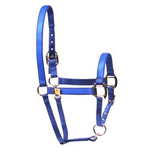 Solid Blue Equine Elite Horse Halter