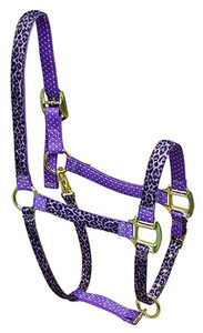 Purple Leopard High Fashion Horse Halter