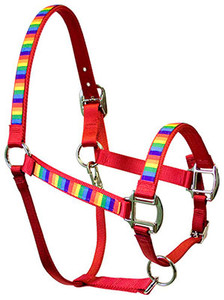 Rainbow Stripe Equine Elite Halter For Miniature Horse
