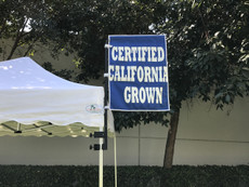 Sky Flag with Frame Certified California Grown Flag - Special Custom Order Call for Price