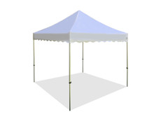 Queen Palm Canopy Frame and Flame Retardant Top (Size:10'x10')
