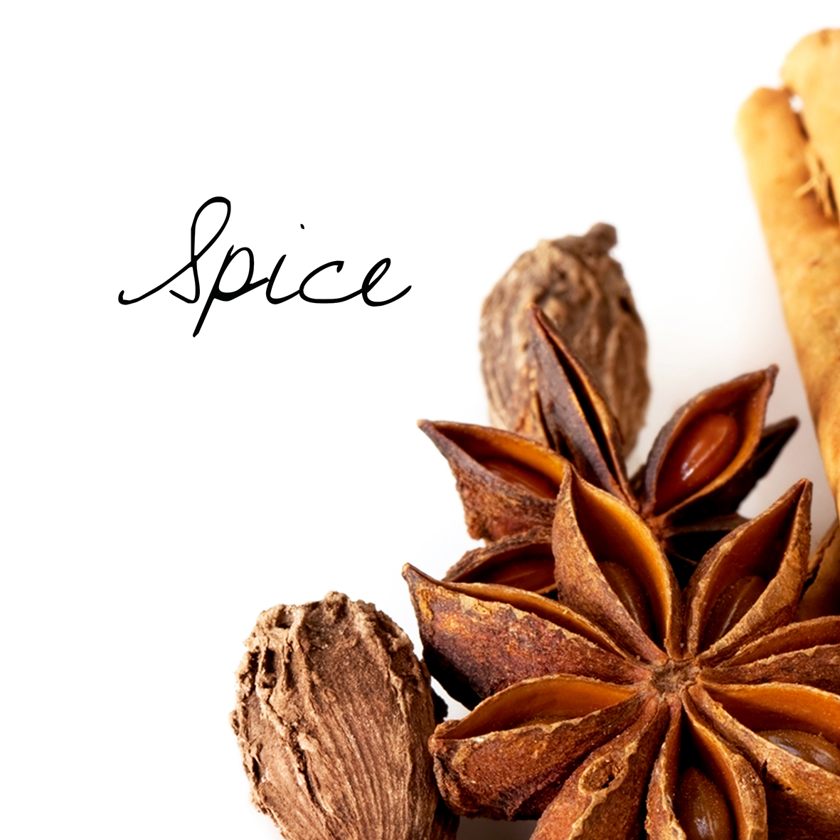 f-spice.jpg