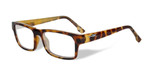 Wiley-X Profile Optical Eyeglass Collection in Gloss-Demi-Brown (WSPRF04) :: Custom Left & Right Lens