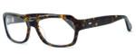 Tortoise & Blonde Designer Eyeglasses Collection Ashbury in Tortoise :: Custom Left & Right Lens