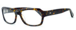 Tortoise & Blonde Designer Eyeglasses Collection Ashbury in Tortoise :: Rx Single Vision