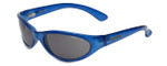 Carrera 4899 Blue Designer Sunglasses