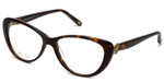 Silver Dollar Designer Reading Glasses Cashmere 456 in Tortoise 53mm
