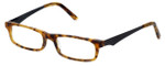 Cinzia Designer Eyeglasses Inside Job C3 in Tortoise 50mm :: Rx Single Vision