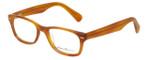Eddie-Bauer Designer Eyeglasses EB8263 in Honey 50mm :: Rx Single Vision