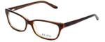 Ecru Designer Eyeglasses Beck-004 in Brown 53mm :: Custom Left & Right Lens