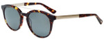Oscar de la Renta Designer Sunglasses SSC5161-215 in Tortoise 51mm