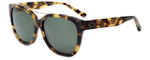 Oscar de la Renta Designer Sunglasses SSC5163-218 in Tortoise 57mm