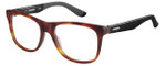 Carrera Designer Eyeglasses CA8814-06VL in Havana Matte Black 53mm :: Custom Left & Right Lens