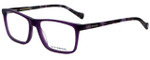 Lucky Brand Designer Eyeglasses D204-Purple in Purple 56mm :: Custom Left & Right Lens