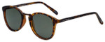 Lucky Brand Designer Sunglasses Indio in Matte Tortoise with Grey Lens