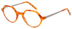 EyeBobs Hexed Designer Reading Eye Glasses in Horn Tortoise/Silver 601-06 48mm