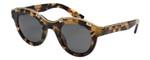 Lanvin Designer Sunglass Green Havana Tortoise/Gold Grey Gradient SLN692-0AGG-45