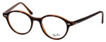 Ray Ban Prescription Eyeglasses RB7118-5713-48mm Tortoise/Caramel Amber Brown Rx