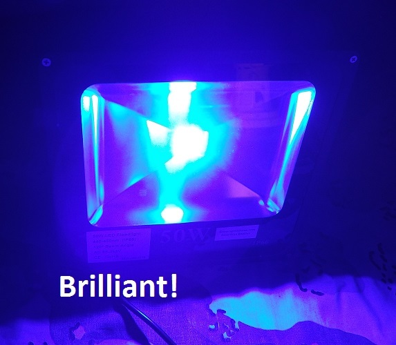 Brilliant Deep Blue Booster 50 Watt Flood Lamp