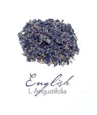 Organic Lavender Buds - Bulk Craft & Culinary