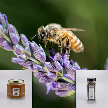 Central Coast Lavender Herbs de Provence and Infused Raw - Lavender Honey bundle for TGIF!