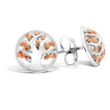 Family Tree Silver Stud Earrings (Rose Gold)