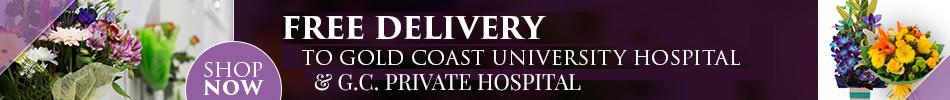 banner-freehospitaldelivery.jpg