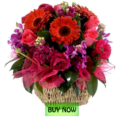 Red Rose Foundation Australia Home: Flower Delivery Botanique